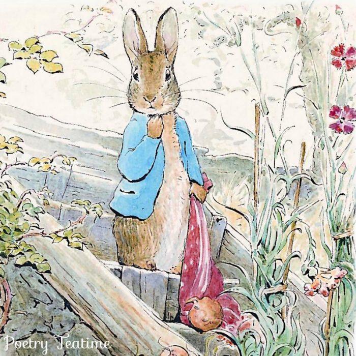 Beatrix Potter Poetry Teatime