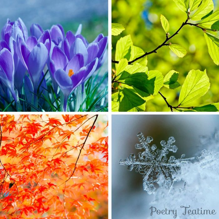 Poetry Collections for the Four Seasons