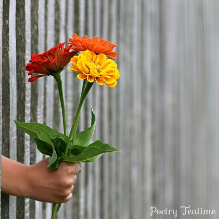Poetry Prompt: Poems as Gifts