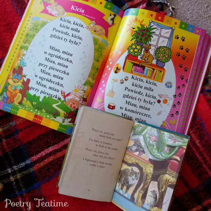 Bilingual Teatime Story