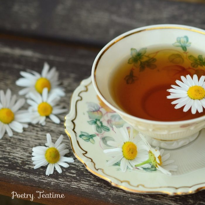 All About Teacups: DIY Activities and Crafts