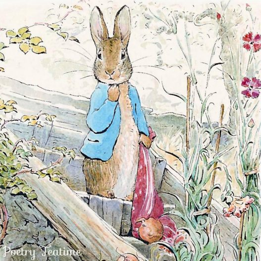 Beatrix Potter Poetry Teatime