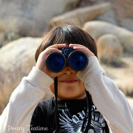 Poetry Prompt: I Spy...