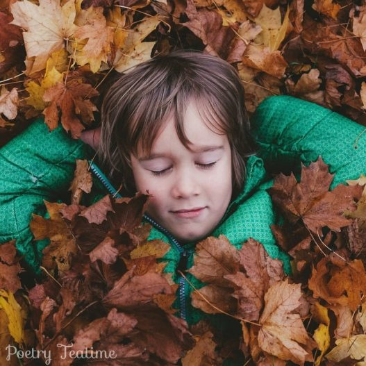 Poetry Prompt: Why Do Leaves Fall?