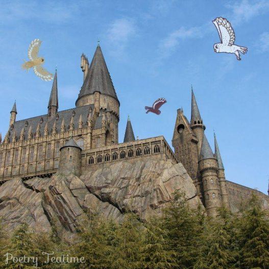 Harry Potter Themed Teatime